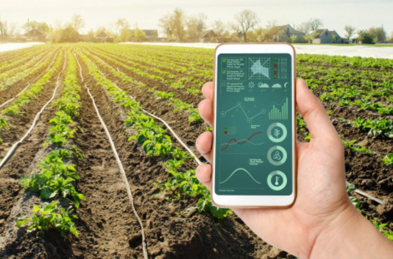 hand-is-holding-smartphone-with-irrigation-system-management-analytics-data_72572-1032