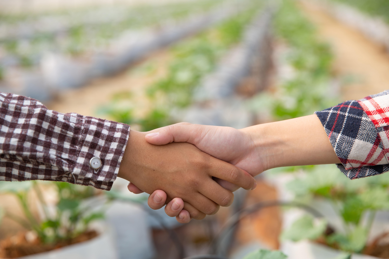 Benefícios das vendas consultivas para empresas do agronegócio