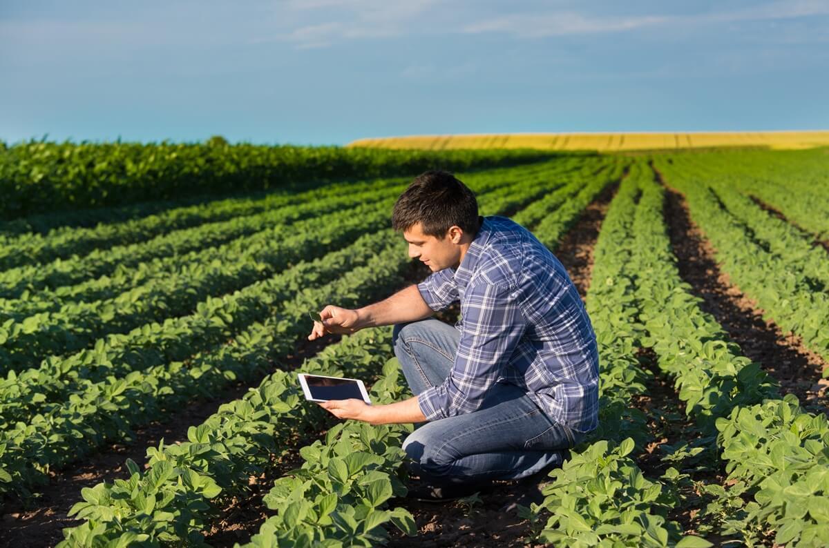 Estratégias para impulsionar as redes sociais de sua empresa no agronegócio